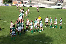 Rugby Touche Roma - Benetton Treviso 9 may 2009.jpg