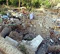 Ruins of Zarqawi's safehouse -a.jpg