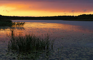 Sartai lake at evening.jpg