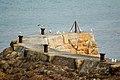 Seagull cobh, Sennen Cove - geograph.org.uk - 498466.jpg