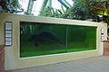 Seekuhanlage (Tierpark Berlin) - 1003-885-(118).jpg