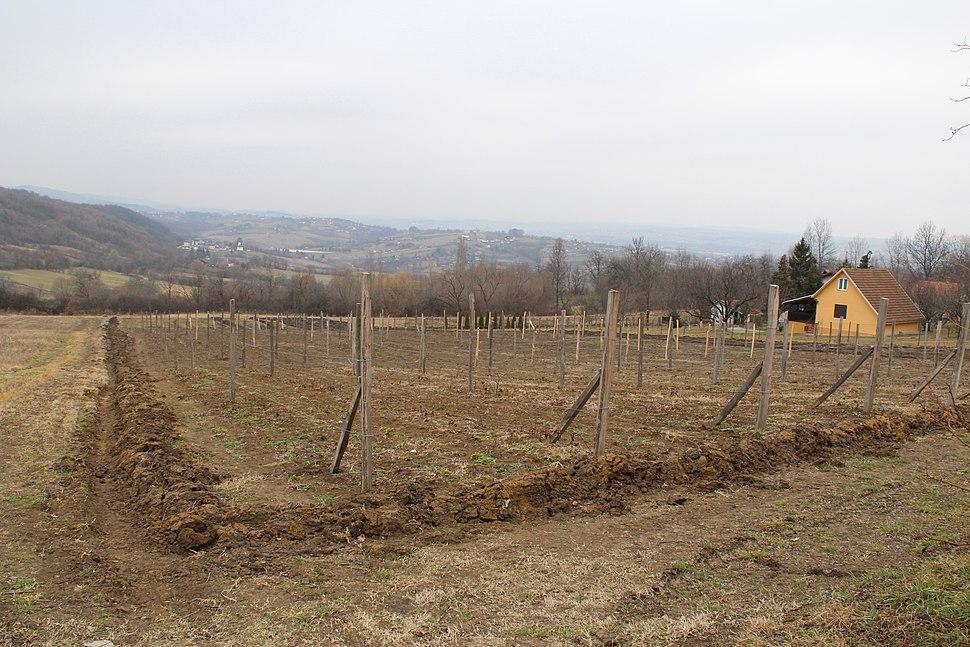 Selo Klinci - opština Valjevo - zapadna Srbija - Panorama 5 - Pogled prema zapadu