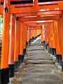 Sembon-Torii in Fushimi Inari Grand Shrine 8.jpg