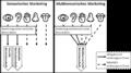 Sensorisches Marketing versus Multisensorisches Marketing.png