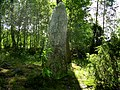Sentida runsten (Raä-nr Götlanda 52-1) 0884.jpg
