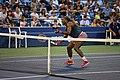 Serena Williams (9634024588).jpg