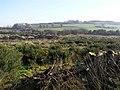 Sessiagh Townland - geograph.org.uk - 689313.jpg