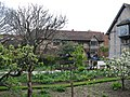 Shakespeare's House - geograph.org.uk - 1716626.jpg