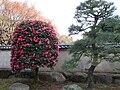 Shin-Edogawa8.jpg