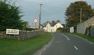 Shinrone - Shinrone on the R491, County Offaly
