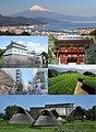 Shizuoka Montage.jpg