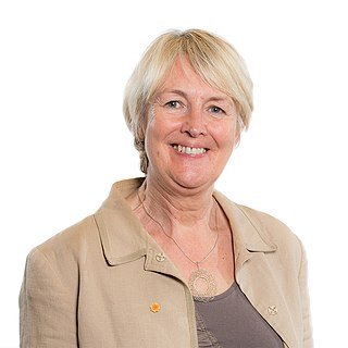 Siân Gwenllian Welsh politician and AM