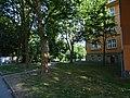 Siegfried Rädel Straße Pirna (28873605318).jpg