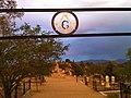 Silver Terrace Masonic Cemetery - panoramio.jpg
