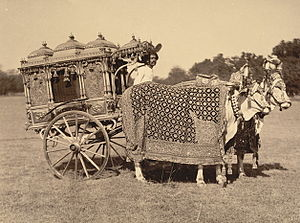 Purdah - Photograph of a Rajput royal silver zenana carriage in the princely state of Baroda, India.  1895, Oriental and India Office Collection, British Library