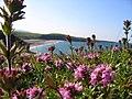 Sinemoretez perfect beach - panoramio.jpg