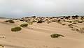 Skeleton Coast Dunes.jpg
