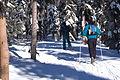 Skiers-chief-joseph-ski-area-montana-2-1-2011-roger-peterson-001 (6819423864).jpg