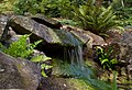 Small waterfall (6019346338).jpg