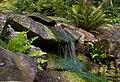 Small waterfall (6019346338).jpg