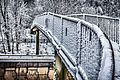 Snowy Footbridge (8395010499).jpg