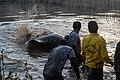 Soltura de peixe-boi, Amapá (48997851217).jpg