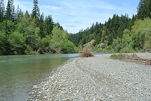 South Fork Eel River - South Fork Eel River near the Avenue of the Giants in the Humboldt Redwoods State Park