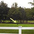 Southwick-stake (crop).jpg