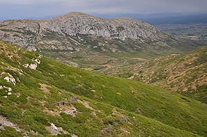 Montgrí Massif - Landscape in the Montgrí Massif, with the Valley of Santa Caterina and the rocky Puig Rodó.