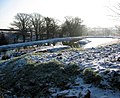 St. Tinney Farm Holidays Coarse Fishing Lake - geograph.org.uk - 233018.jpg