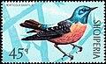 Stamp of Albania - 1971 - Colnect 301816 - Common Rock Thrush Monticola saxatilis.jpeg