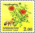 Stamps of Tajikistan, 024-08.jpg