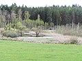 Stedtlinger Moor 1.jpg