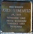 StolpersteinMagdeburgBlumenfeldUlrich.jpg