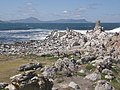 Stony Point Penguin Colony - panoramio (14).jpg