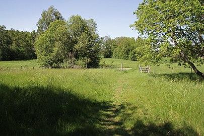 Strömsholm naturreservat hage.jpg