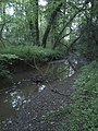 Stream near Webber Lane - geograph.org.uk - 452956.jpg