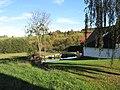 Stuchanov, rybník za domem.jpg