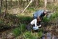 Studying a small wetland stream (7067578993).jpg
