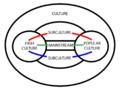 Surculture-diagram500.png