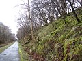 Sustrans National Cycle route No. 7 - geograph.org.uk - 1227545.jpg
