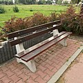 Sztutowo-bench-180801.jpg