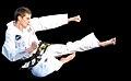 Taekwondo kick.jpg