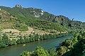 Tarn River in Les Vignes 07.jpg