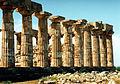 Temple E (Hera) at Selinunte, North Side sel11.jpg