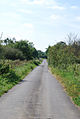 Temple Lane towards Templecombe - geograph.org.uk - 550391.jpg