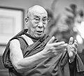 Tenzin Gyatso - 14th Dalai Lama (14557808766).jpg