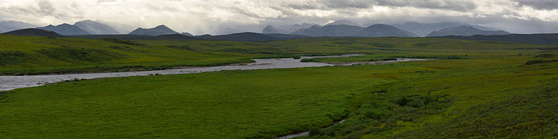 The Anaktuvuk River