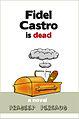 The Death of Fidel Castro - small.jpg