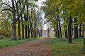 The Fall in St.Petersburg (22065080150).jpg